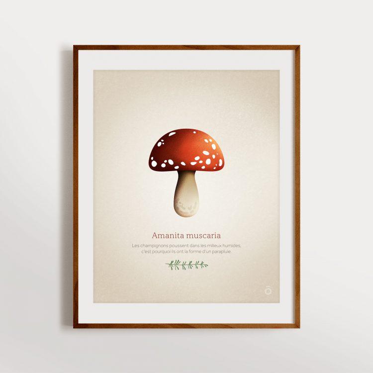 Affiche Amanita muscaria – Écru « Little tales »